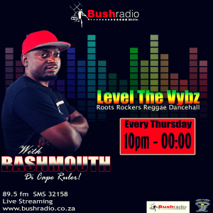 Level The Vybz with Bashmouth Di Cape Ruler @ Bush Radio FM 89.5fm